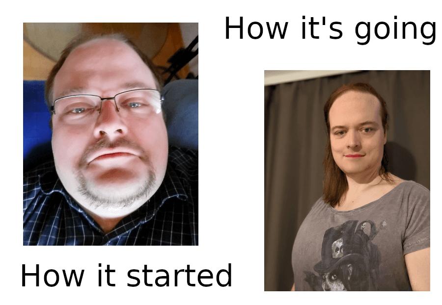 Meme: Transition Timeline / How it started